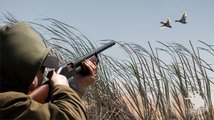 В Саратовской области начинается весенняя охота: рассказываем, кого можно отстреливать, а кого запрещено